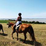 Campingplatz Frankreich Normandie, Balades en cheval