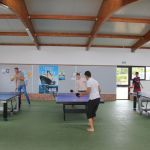 Camping Normandie, ping pong